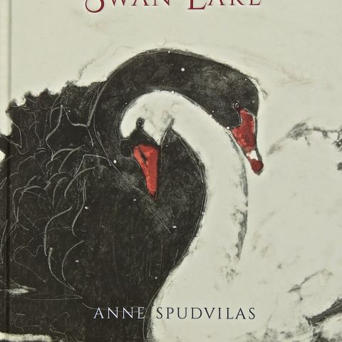 Illustrated retelling of Swan Lake, pub. Allen&Unwin 2017
