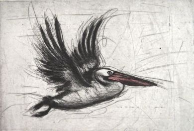 Pelican at Lock 10